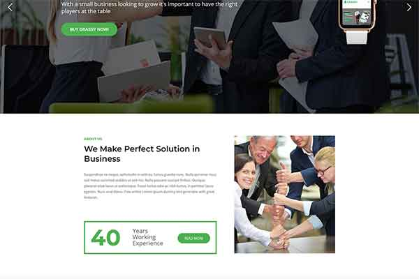 WordPress corporate theme for business